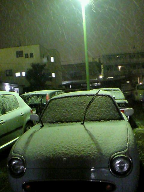 雪が降っても幸せ醒めやらず。