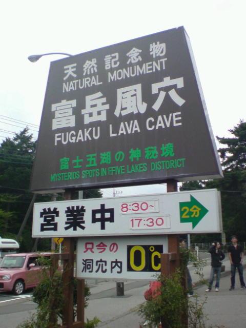 洞窟はしご。